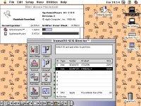 PB Duo 270c - Sys 755.jpg